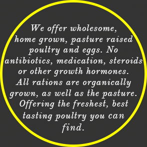 We offer wholesome, home grown, pasture raised poultry and eggs. No antibiotics, medication, steroids or other growth hormones. All rations are organically grown as well as the pasture. Offering the freshest, best tasting poultry you can find.